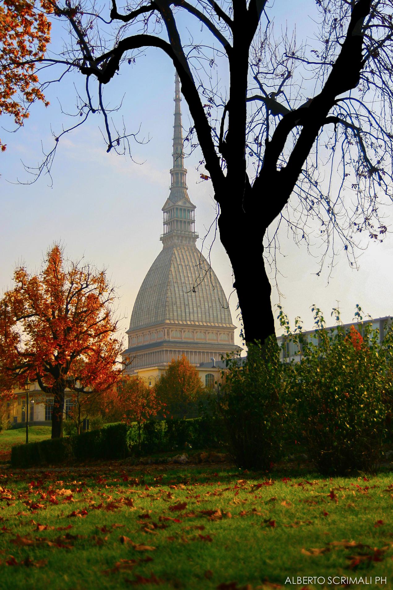 Parco del Valentino - Torino